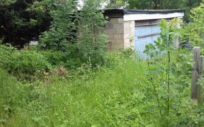Allotment – A Great New Project